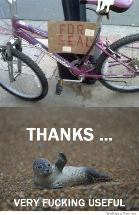 for-seal-thanks.jpg